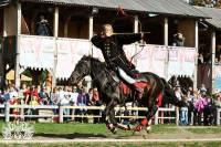 Княжеская конюшня «Парка Киевская Русь» приглашает в путешествие сквозь века