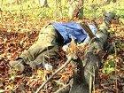 Мать не узнала Ярослава Мазурка, гидрометцентр тоже удивил слегка. Картина выходных (17-18 ноября 2012)