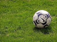 За тренерство украинской сборной Гарри Реднаппу предложили контракт на 6 млн. фунтов плюс бонусы за победу