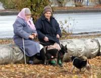 Вот теперь пенсионеры заживут. С 1 декабря минимальную пенсию поднимут аж до 884 гривен