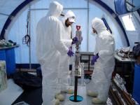 Ученые обнаружили в антарктическом озере жизнь, 3000 лет изолированную от внешней среды