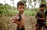 В Камбодже, если дети хотят сладкого, они просят не конфет, а… парочку пауков