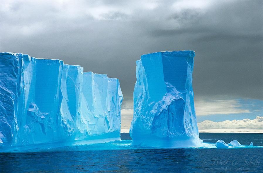 http://s.fraza.ua/images/2012/12/06/arktika-antarktika-6.jpg