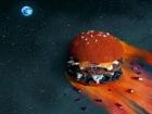 Французы попытались представить, как выглядит вселенная больших и яростных бургеров