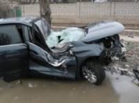В суровом Николаеве водитель чудом выжил после жесткого столкновения с деревом