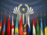 На каком языке профессор В. Пинзеник рассуждает о правилах Таможенного союза