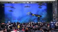 В китайском торговом центре лопнул аквариум с акулами