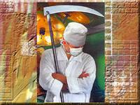 Деньги не пахнут, или Как столичные последователи Айболита оценивают жизнь «по рыночным ценам»