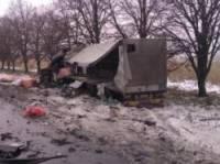 На Полтавщине не поделили дорогу два огромных грузовика. Погибли оба водителя