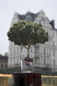 Жительница Колорадо придумала весьма странное применение обычному стакану
