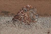 Морской песок, ракушки и необыкновенный талант. Оказывается, этого достаточно, чтобы создать шедевр