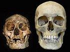 В центре Архангельска найден мешок с человеческими черепами