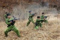 Перемирие отменяется. Пхеньян выходит из соглашений о ненападении с Сеулом