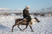 Увезу тебя я в тундру… Вот так живут оленеводы в Якутии