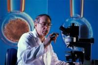 «Ученых» много, наукой заниматься некому…