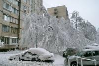 Киевлянам проще убрать снег во дворах самостоятельно, чем ждать, пока Попов об этом вспомнит