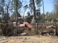 Пуща-Водица сегодня: свалки, разруха и особняки