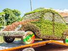 В Печерском районе Киева открылась Выставка Зеленых Авто