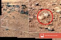 Аппарат Curiosity обнаружил на Марсе… очень милую крысу