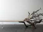 Французский дизайнер предложил уникальное решение для тех, кто любит посидеть на сломанных деревьях