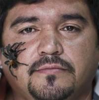 У чилийца дома живут пять тысяч пауков размером с человеческую руку