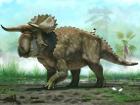 Американские ученые нашли неизвестный вид динозавров. Тем, кто выговорит название, можно давать премию