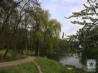 Родители, будьте бдительны. В Киеве на территории пяти парков работают незаконно установленные детские аттракционы