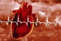 В 2013 году каждый второй украинец умер от болезней сердца и системы кровообращения