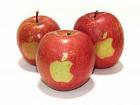 Apple пустила в люди собственную «Семерку»