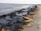 На юге Одессы берег моря превратился в сцену из апокалиптического фильма