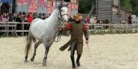 Красота — страшная сила. Породистых лошадей со всего мира показали в «Парке Киевская Русь»