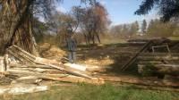 На Черкасщине уничтожили объект заповедника «Родина Тараса Шевченко»