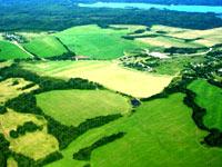 Земля — без права на аренду и с единственным собственником в перспективе