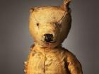 Ирландский фотограф собрал шокирующую коллекцию детских медвежат. И того, что от них осталось