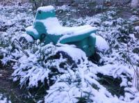 Вот и пришла зима. Под Киевом уже выпал первый снег