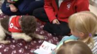 В финском городке детей учат читать не взрослые, а… собака