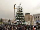 Новогоднюю елку, возможно, перенесут с Майдана Незалежности на Михайловскую площадь