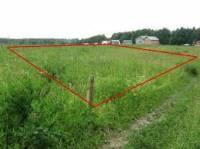 На Киевщине чиновник с помощью хитроумной схемы пытался выделить себе кусочек земли