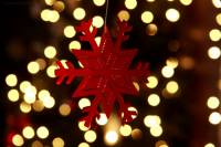 Все в «АРТ САД». Под Новый год вас ждет «Зимнее настроение»