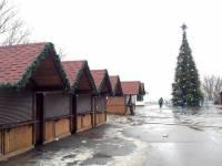 Душераздирающее зрелище. У Арки Дружбы народов установили главную новогоднюю елку