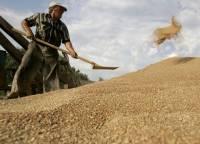 Аграрии просят избавить их от непрошеной заботы