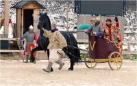 Попросить удачи в Новом году у 12 лошадей можно в «Парке Киевская Русь»