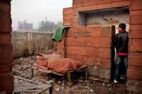 Хороший сюжет для фильма. В Индии жена решила вернуться к мужу после того, как он пообещал построить… туалет