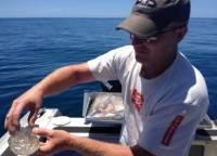 Житель Новой Зеландии вытащил из океана новую загадку природы