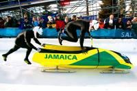 По дороге в Сочи сборная Ямайки умудрилась потерять не только свой багаж, но и боб, на котором собиралась выступать