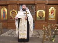 Протоиерей УПЦ (МП) в День Татьяны пожелал пожелал участникам Майдана, «чтоб бог послал им болезнь» и «чтоб они сожрали друг друга»
