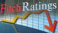 Fitch подтвердило преддефолтное состояние Украины