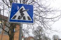 Спешите видеть. В Норвегии появился первый в мире пешеходный переход для «дураков», но скоро может исчезнуть