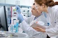 Американские ученые доказали, что интеллект напрямую зависит от генов
