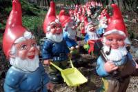 Полиция Шотландии задержала серийных похитителей садовых гномов